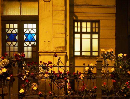 Helsingin synagoga kukitettiin solidaarisuuden merkiksi maanantaina 18.11.2019